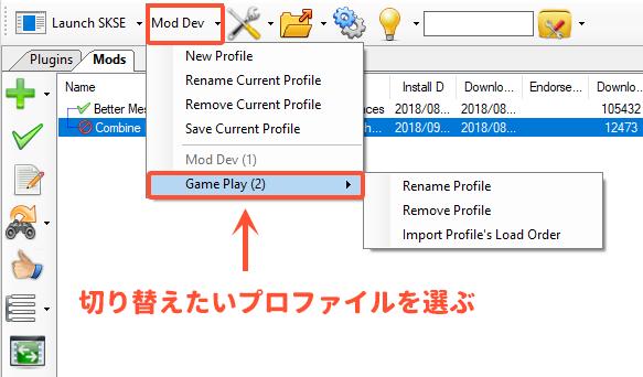 Nexus Mod Managerの使い方 skyrimshot